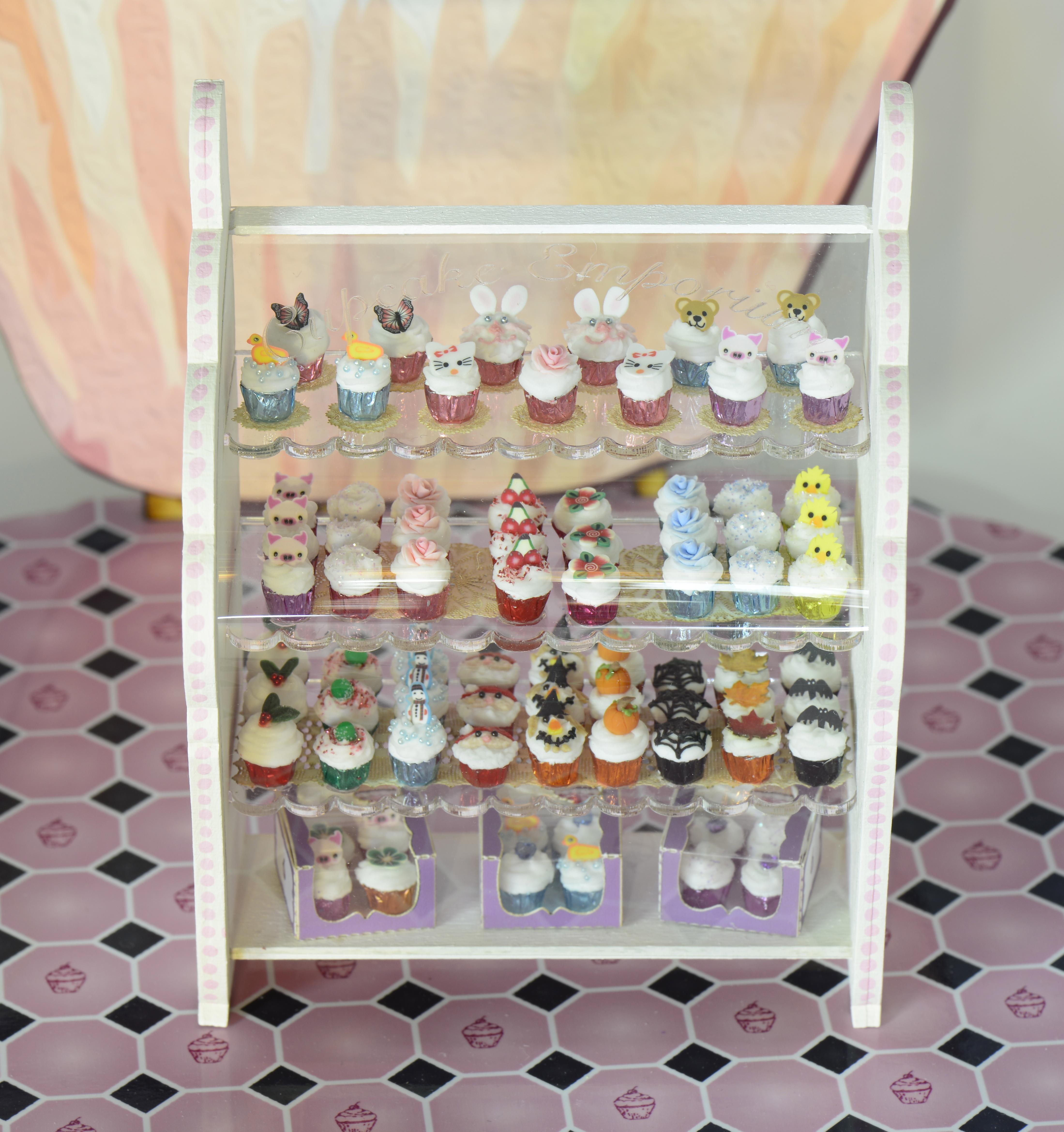 cupcake display case kit