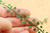 1:12 Grape leaves
